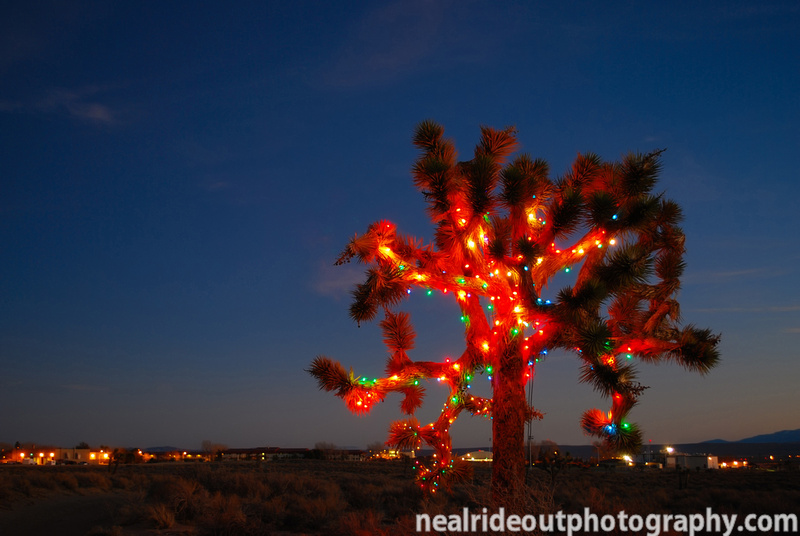 Christmas Tree In The Desert.Neal Rideout Photography Misc Night Photos High Desert